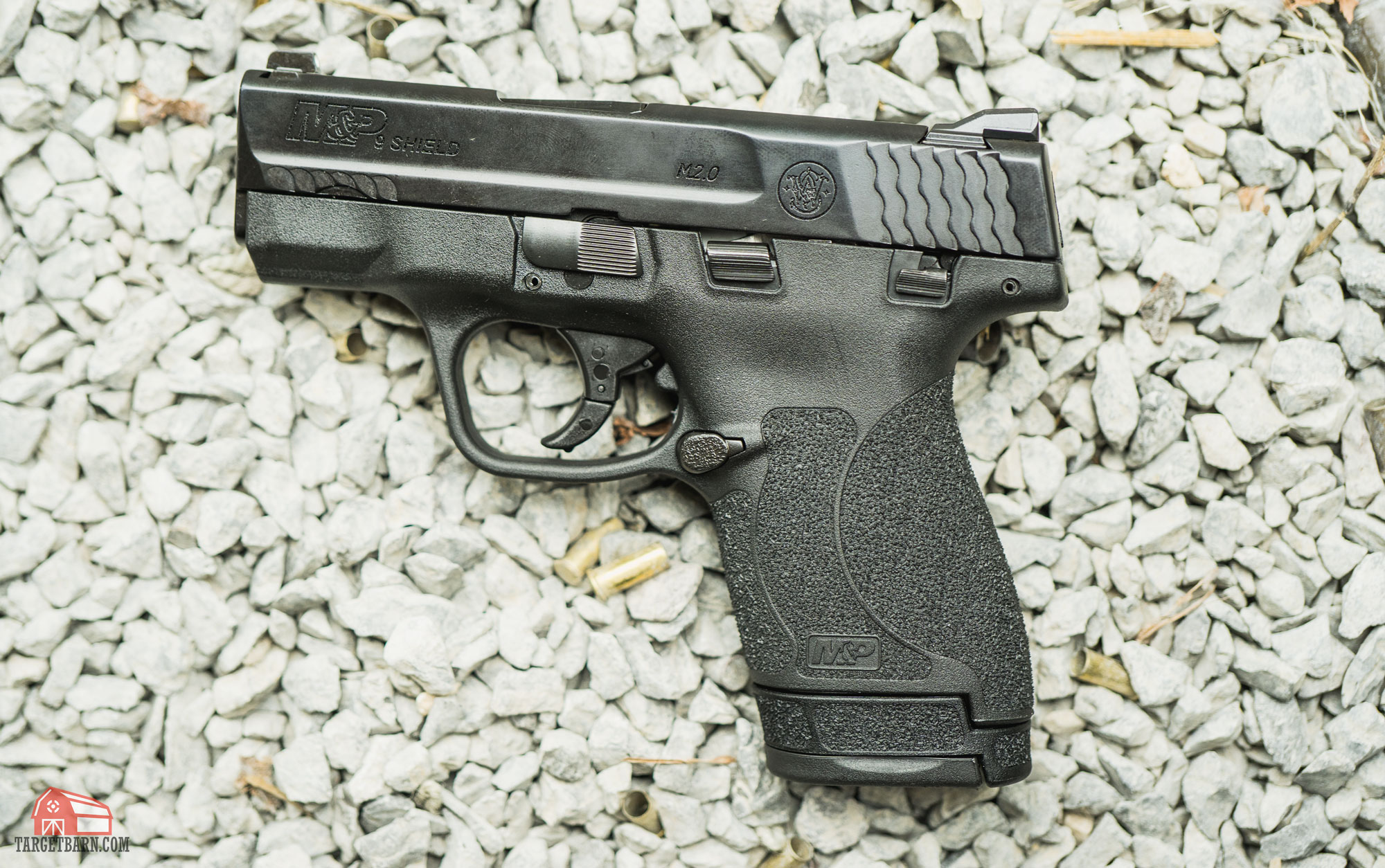a s&w m&p shield for back up gun division