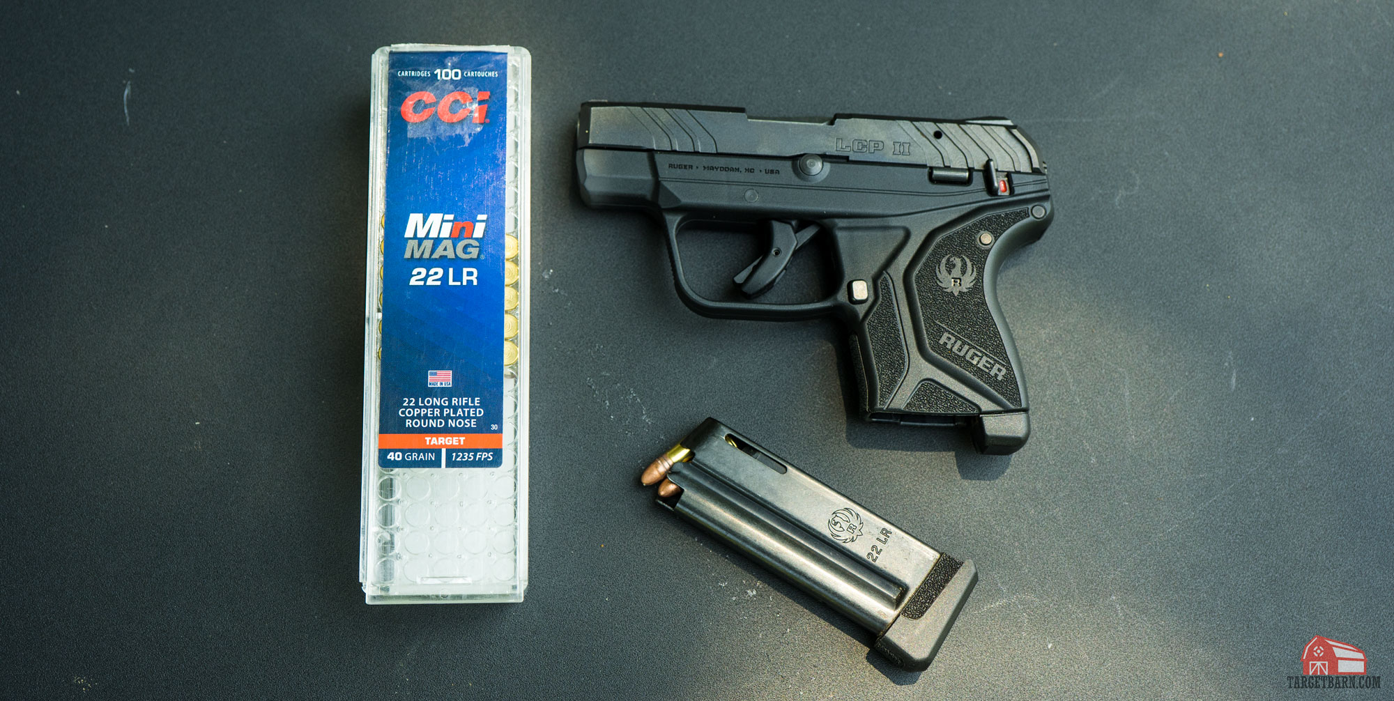 the cci 22lr mini mag is underpowered for use as a self defense round