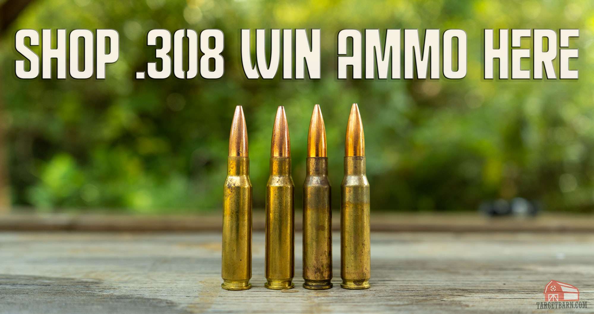 shop 308 win ammo here