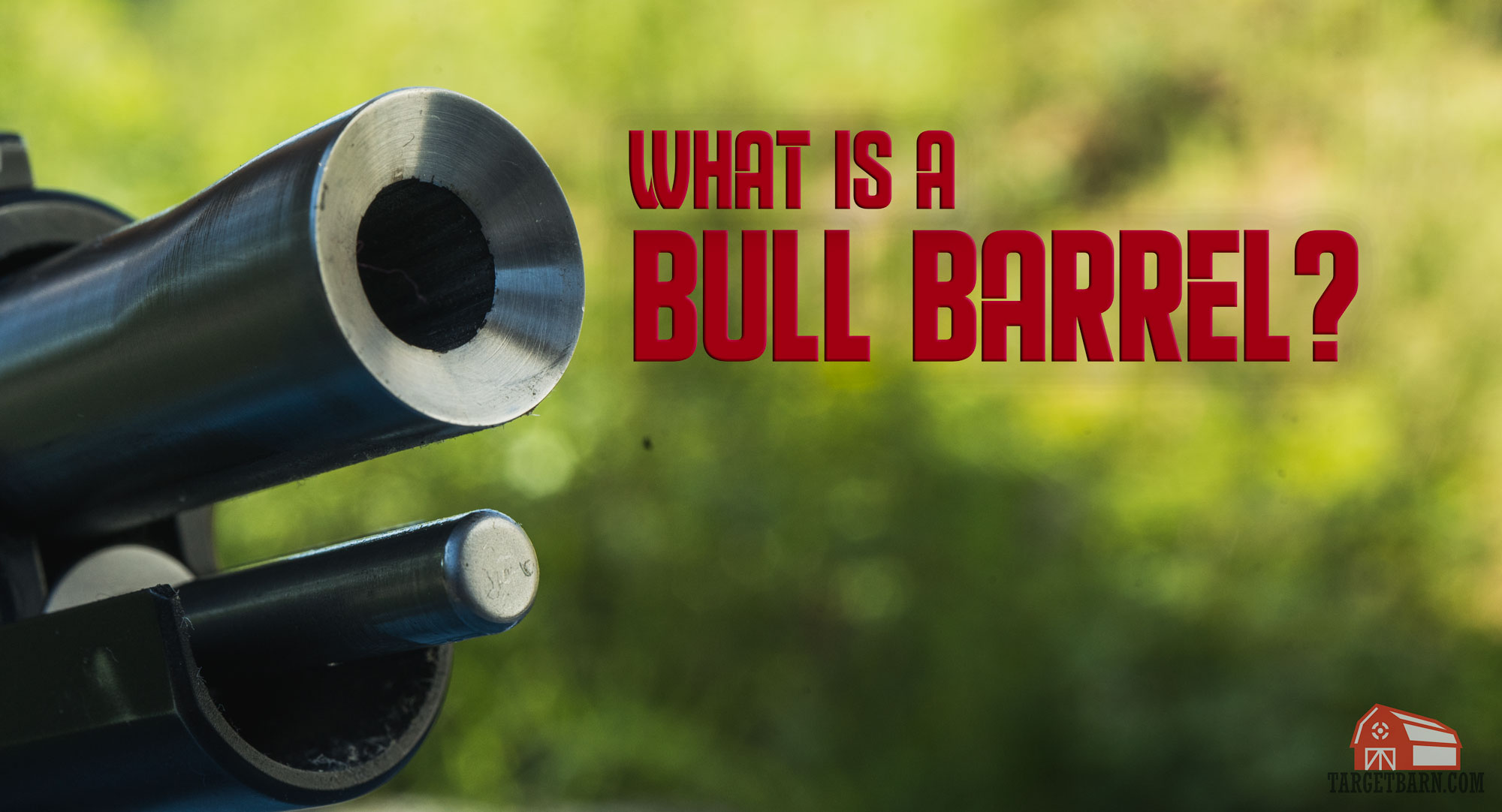 what is a bull barrel hero image